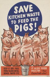 Save Kitchen Waste to Feed the Pigs!