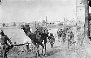 THE MESOPOTAMIAN CAMPAIGN, 1916-1918