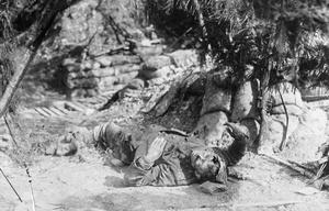 FIRST WORLD WAR CASUALTIES ON THE WESTERN FRONT