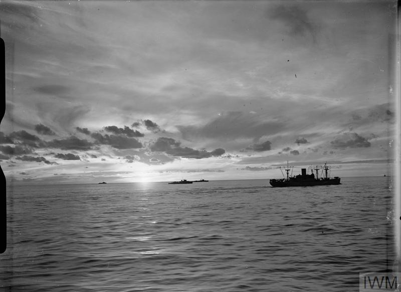 THE ROYAL NAVY DURING THE SECOND WORLD WAR