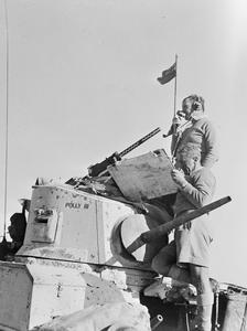 NEW ZEALAND FORCES IN THE WESTERN DESERT, C. JANUARY 1943