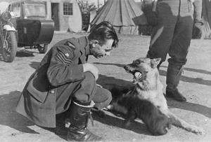 PERSONNEL OF NO.19 SQUADRON ROYAL AIR FORCE AT FOWLMERE, 1940-1941.