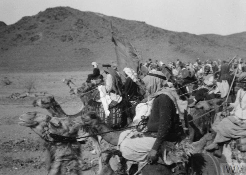 Image result for arab revolt 1916