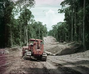 SCENES IN MALAYA, 1954