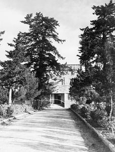 WESTERN DESERT, C. 1943