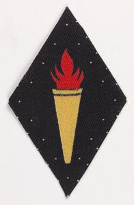 badge, formation, 218th Independent Infantry Brigade (Home)