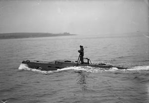 THE ROYAL NAVY DURING THE SECOND WORLD WAT