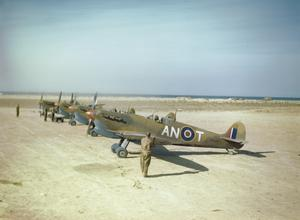 THE ROYAL CANADIAN AIR FORCE IN TUNISIA, MAY 1943