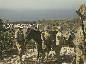 THE BRITISH ARMY DURING THE CAMPAIGN IN ITALY, SEPTEMBER 1943