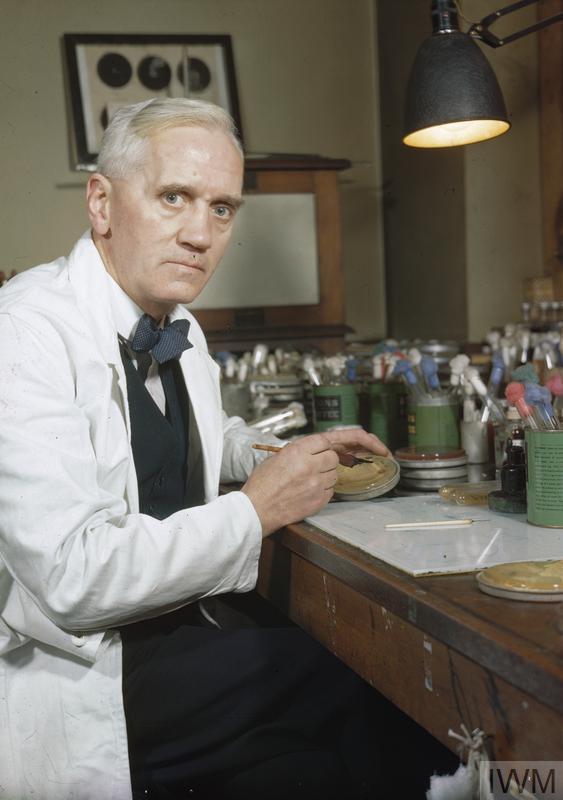 Fleming, rivoluziona la medicina con la scoperta dell'antibiotico, qui è ritratto nel suo laboratorio