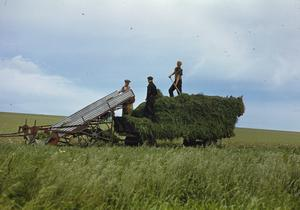FARMING IN BRITAIN DURING THE SECOND WORLD WAR