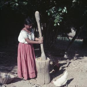 DAILY LIFE ON THE MAYA INDIAN RESERVE OF SAN ANTONIO IN BRITISH HONDURAS (BELIZE), MARCH 1955