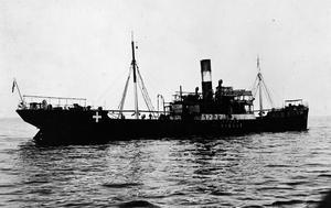 THE GERMAN NAVY IN THE MEDITERRANEAN, 1914-1918