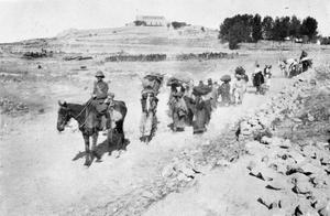 THE BRITISH ARMY IN PALESTINE 1917-1918
