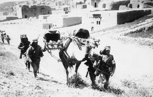THE GERMAN ARMY IN THE SINAI AND PALESTINE CAMPAIGN, 1915-1918