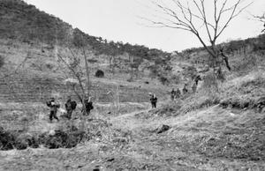 THE ARGYLL & SUTHERLAND HIGHLANDERS IN KOREA, 1950 - 1951