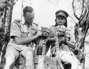 SOUTH AFRICAN AIRMEN'S JUNGLE MASCOTS, 1941