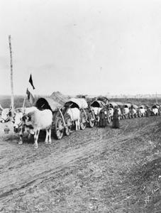 WOMEN'S SICK AND WOUNDED CONVOY CORPS
