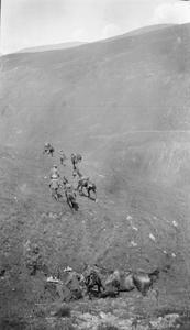 THE BRITISH ARMY IN PRE-1914 PERIOD