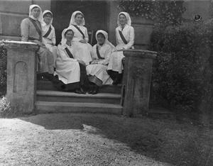 THE WOMEN'S WORK IN MEDICAL SERVICES ON THE HOME FRONT, 1914-1918