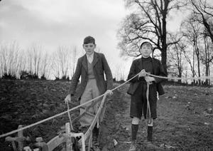 FARMERS IN THE MAKING: EVACUEES LEARN ABOUT FARMING, DEVON, ENGLAND, UK, 1941