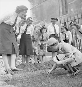 BRITAIN'S YOUTH PREPARES: GIRLS CREATE ALLOTMENTS ON BOMB SITE, LONDON, ENGLAND, 1942