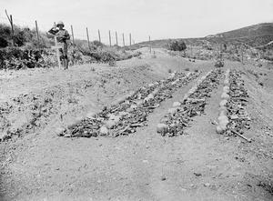 THE BRITISH ARMY IN THE MEDITERRANEAN, 1919-1939