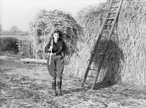 WOMEN'S LAND ARMY TRAINING, CANNINGTON, SOMERSET, ENGLAND, C 1940
