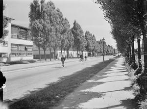 WELWYN GARDEN CITY: THE MODEL NEW TOWN