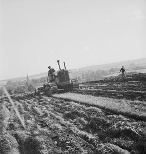 WASTELAND RECLAIMED, HUNTINGDONSHIRE, ENGLAND, C 1942