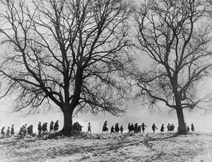 EVACUEES' NATURE WALK IN DEVON, 1941