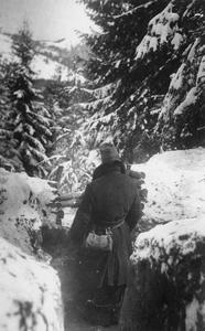 THE AUSTRO-HUNGARIAN ARMY IN THE ROMANIAN CAMPAIGN, 1916-1918