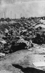 THE GERMAN ARMY IN THE ROMANIAN CAMPAIGN, 1916-1918