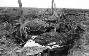 THE NIVELLE OFFENSIVE, APRIL-MAY 1917