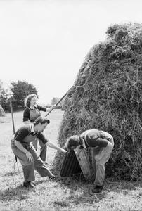 BATTLE OF THE LAND: THE WORK OF THE WOMEN'S LAND ARMY ON THE BRITISH HOME FRONT, 1942