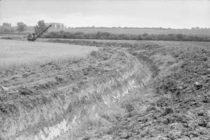 WASTE LAND RECLAIMED: AGRICULTURE IN HUNTINGDONSHIRE, ENGLAND, 1942