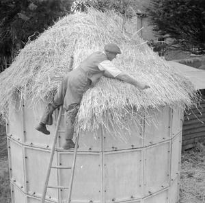 AGRICULTURE IN BRITAIN: LIFE ON MOUNT BARTON FARM, DEVON, ENGLAND, 1942