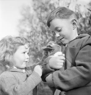 LUXEMBOURGERS IN ENGLAND: EVACUEES IN SURREY, 1942