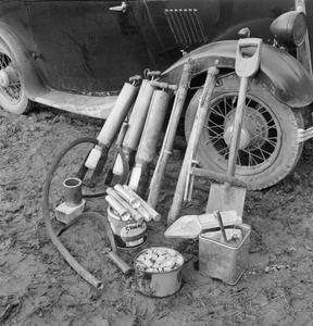 ARREST THAT RAT: THE WORK OF THE WOMEN'S LAND ARMY RAT CATCHERS, SUSSEX, 1942