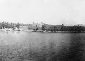 THE BRITISH ARMY IN MESOPOTAMIA 1917