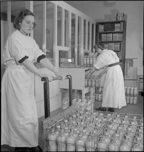 BLOOD DRYING UNIT: PROCESSING BLOOD IN THE LABORATORY, CAMBRIDGE, ENGLAND, UK, 1943