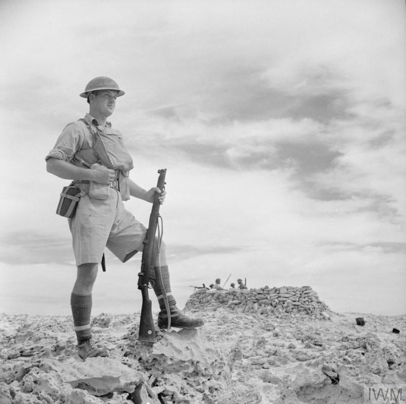 THE BRITISH ARMY IN NORTH AFRICA 1941 (E 6377