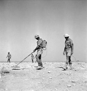 SOUTH AFRICAN FORCES IN NORTH AFRICA DURING THE SECOND WORLD WAR