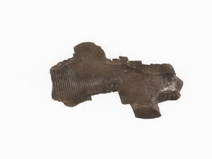 fragment, bomb casing