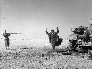 COMMONWEALTH FORCES IN NORTH AFRICA 1941
