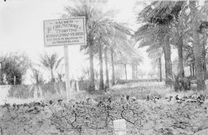 THE CAMPAIGN IN MESOPOTAMIA 1914-1918