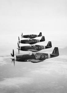 AMERICAN AIRCRAFT IN ROYAL AIR FORCE SERVICE 1939-1945: NORTH AMERICAN NA-73 & NA-102 MUSTANG.