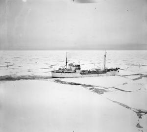 BRITISH TRANS ARCTIC EXPEDITION SHIP BREAKS OUT OF WEDDELL SEA PACK ICE. JANUARY 1956, IN THE ANTARCTIC.