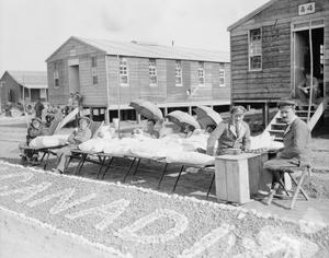 MEDICINE DURING THE FIRST WORLD WAR: BASE HOSPITALS