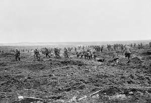 CANADIAN FORCES ON THE WESTERN FRONT IN THE FIRST WORLD WAR